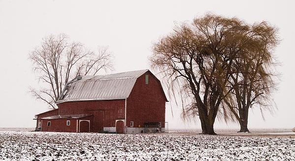 020213-57   Prairie Winter IIi Print by Mike Davis - Micks Pix Photos