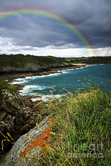 Atlantic Coast In Brittany Print by Elena Elisseeva