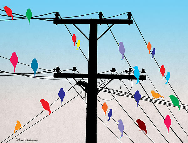 Birds  Print by Mark Ashkenazi