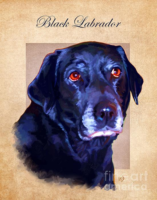 Black Labrador Art Print by Iain McDonald