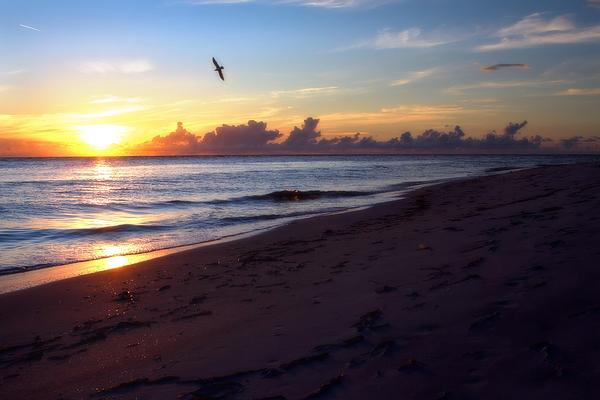 Boca Grande Florida Print by Fizzy Image