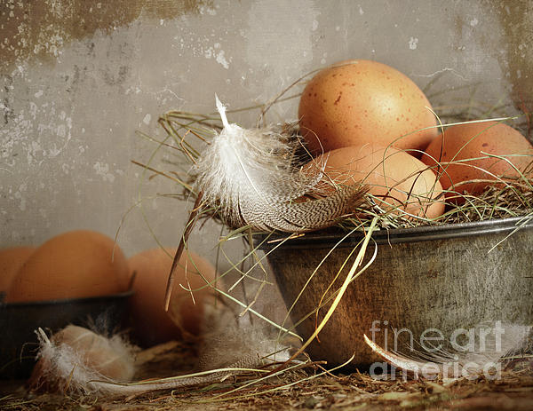Brown Speckled Eggs  In Old Tin Bowl Print by Sandra Cunningham
