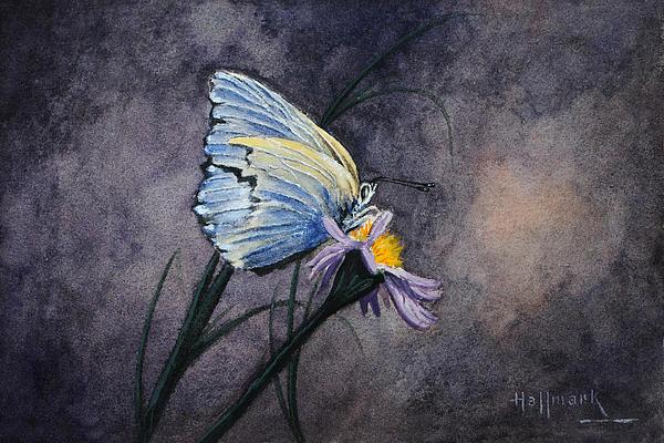 Butterfly Print by Bob Hallmark