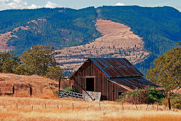 Columbia River Barn Print by Peter Tellone