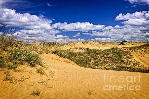 Desert Landscape In Manitoba Print by Elena Elisseeva