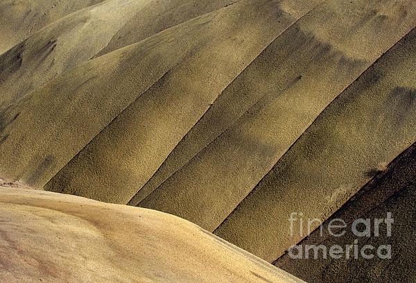 Desert Lines Print by Mike  Dawson