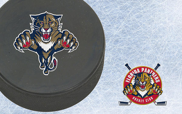 Florida Panthers Print by Joe Hamilton