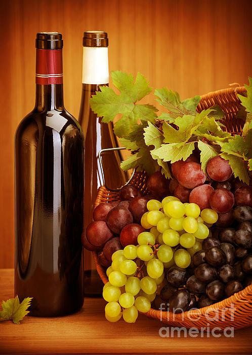 Grape Wine Still Life Print by Anna Omelchenko