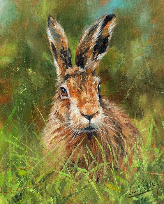 David Stribbling - hARE