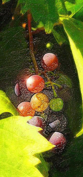 Harvest Time Print by Ron Regalado