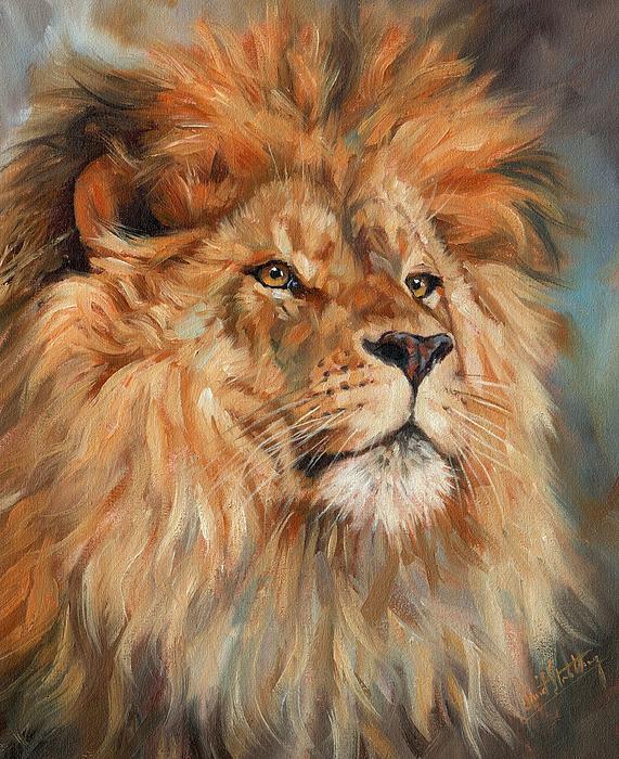 Lion Print by David Stribbling