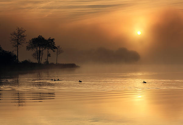 Loch Ard Morning Glow Print by Grant Glendinning