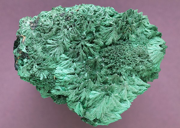 Malachite Mineral Print by Science Photo Library