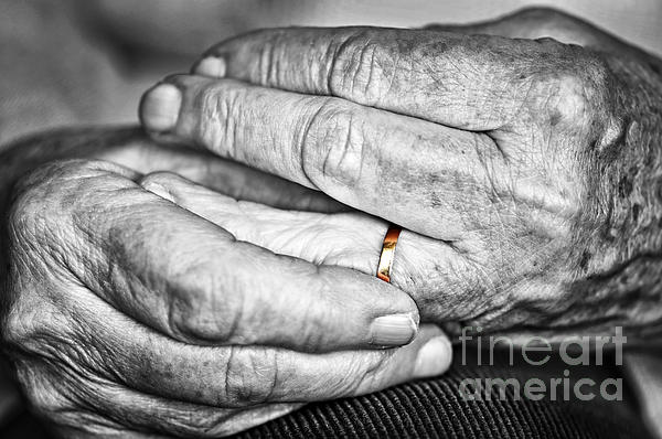 Old Hands With Wedding Band Print by Elena Elisseeva