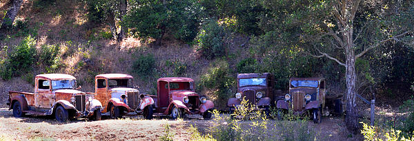 Oldtimers Rendezvous Print by Lynn Bauer
