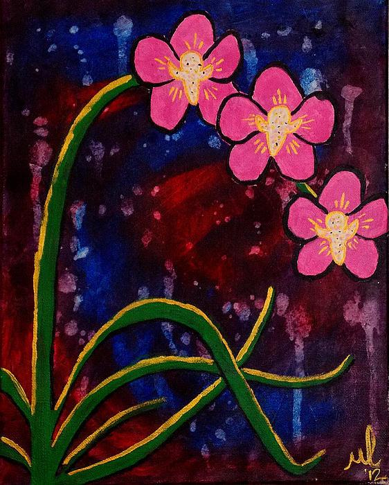 Melanie Hamm - Orchids