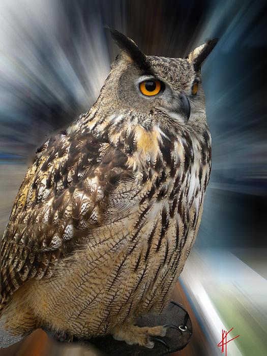 Colette V Hera  Guggenheim  - Owl Alba Spain