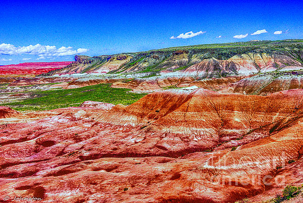 Painted Desert National Park Panorama Print by  Bob and Nadine Johnston