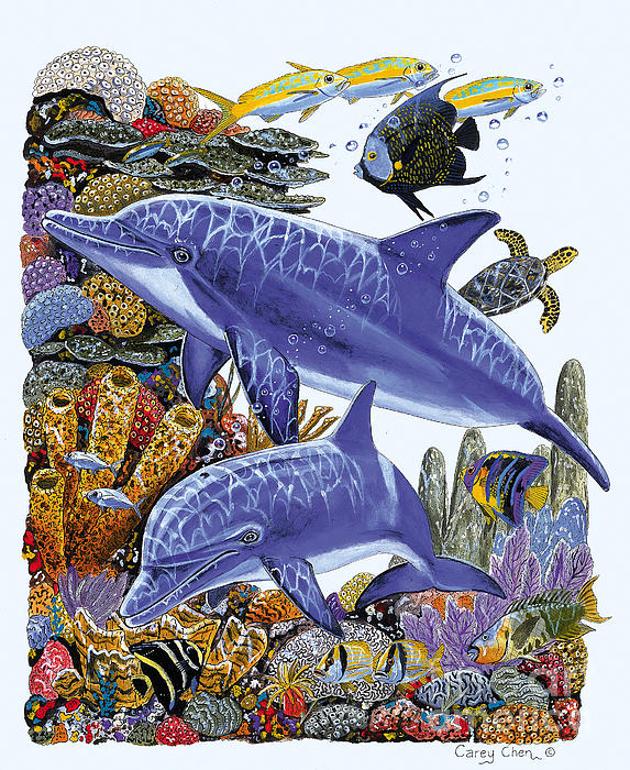 Porpoise Reef Print by Carey Chen