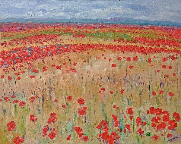 Provence Poppies Print by Barbara Anna Knauf