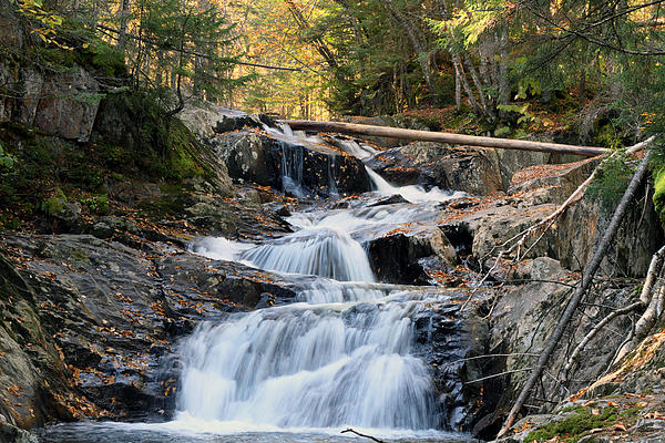 Roaring Brook Falls Print by Brett Pelletier