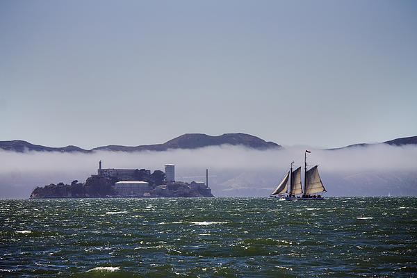 Sailing To Alcatraz Print by Dee  Savage