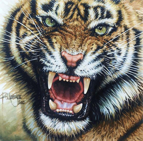 Siberian Tiger Print by Ralph N Murray III