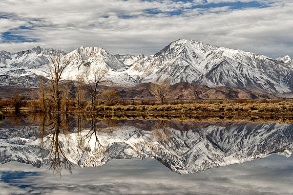 Sierra Reflections Print by Cat Connor