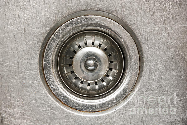 Sink Plug Print by Tim Hester