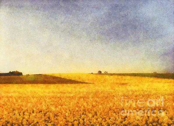 Summer Field Print by Pixel Chimp