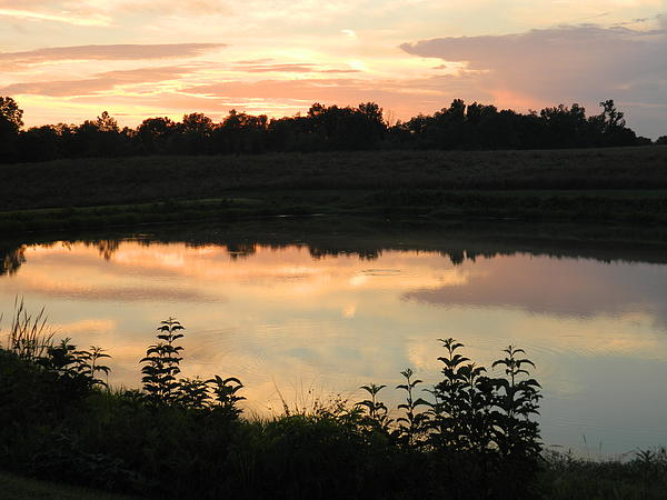 Sunset Reflection Print by Linda Brown