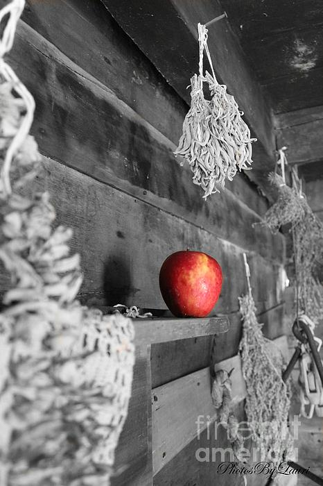 The Apple Print by Laurinda Bowling