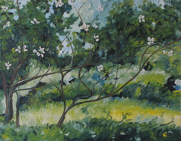 Francois Fournier - The Apple Tree With Long Branches
