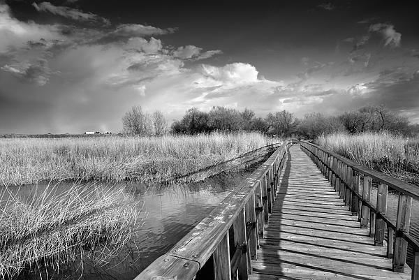 The Bridge Print by Guido Montanes Castillo