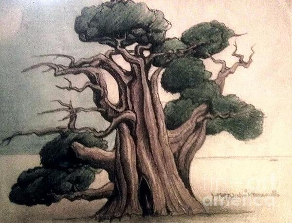 Tree Print by Justin Moranville