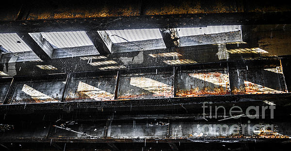 Under The Street Print by Diane Diederich