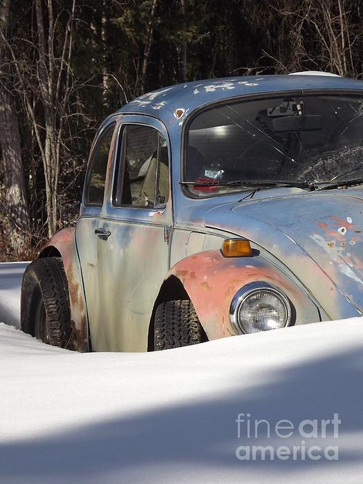 Volkswagen Beetle Print by Jennifer Kimberly
