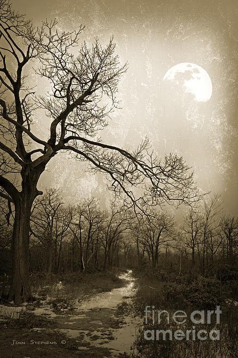John Stephens - Everlasting Moon