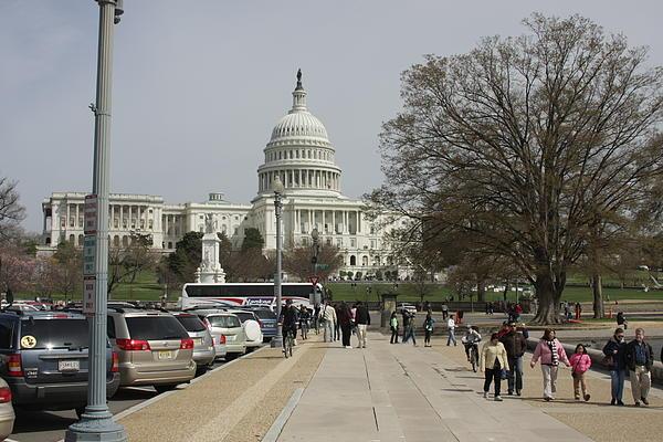Washington Dc - Us Capitol - 01133 Print by DC Photographer