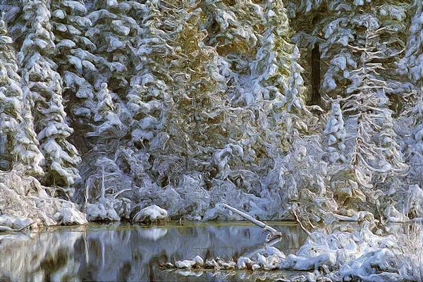 Winter Scene Print by Pat Now