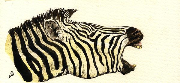 Zebra Head Study Print by Juan  Bosco