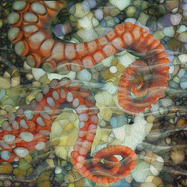 Beneath The Waves Series Print by Jack Zulli