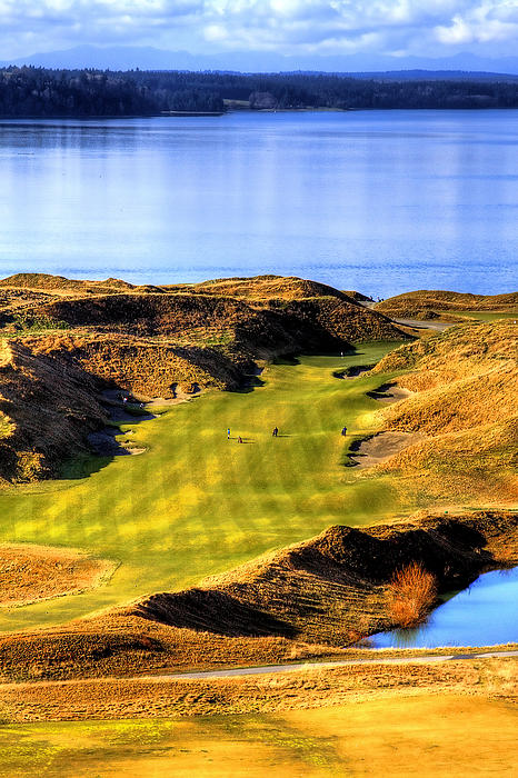 10th Hole At Chambers Bay Print by David Patterson