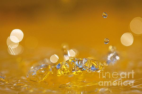 Water Drops Print by Odon Czintos