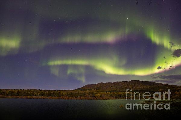 Aurora Borealis With Moonlight At Fish Print by Joseph Bradley