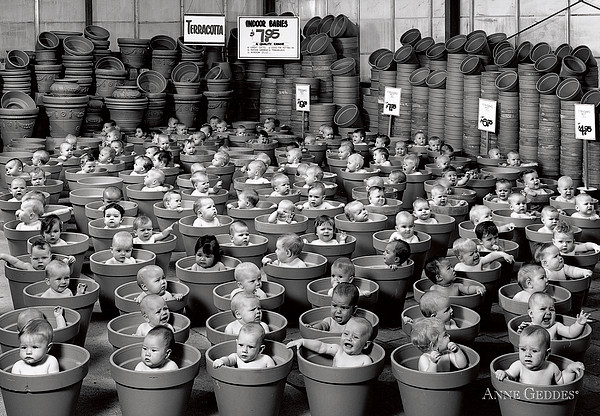 123 Pots Print by Anne Geddes