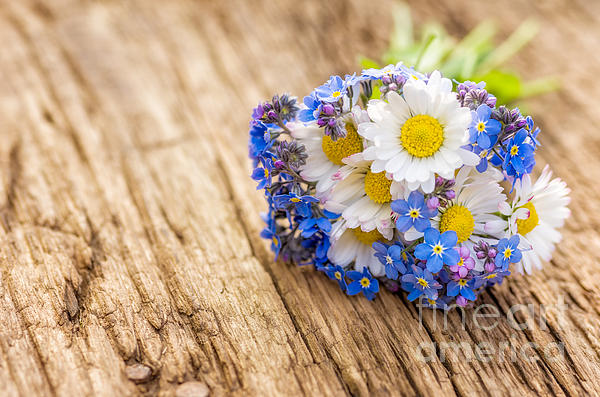 Bouquet With Daisies And Forget-me-not Print by Palatia Photo