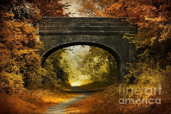 Bridge Print by Svetlana Sewell