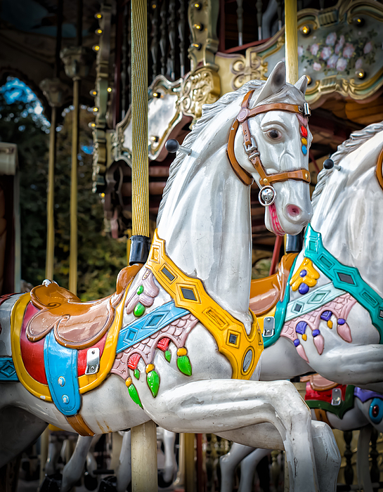 Carousel Horses By Hans Engbers