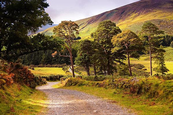 Celtic Spirit. Wicklow  Mountains. Ireland Print by Jenny Rainbow